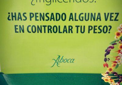 LIBRAMED DISMINUYE EL PICO DE AZUCAR EN SANGRE Y DE PASO EL COLESTEROL Y LOS TRIGLICERIDOS